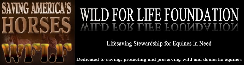 Wild for Life Foundation
