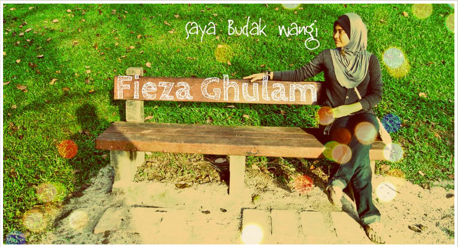 Fieza Ghulam Story