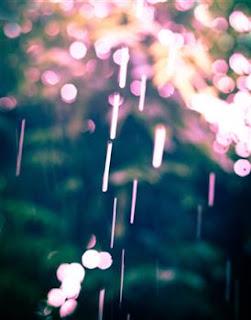 http://www.americanframe.com/artist/jaime-e-johnson/rain.aspx