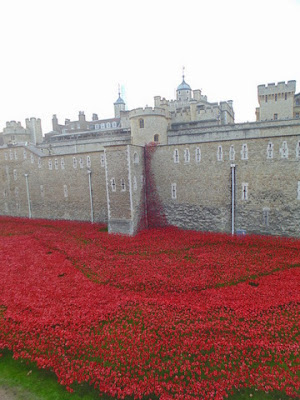 Eastern wall cascade of poppies (copyright G.K. Jakobs).