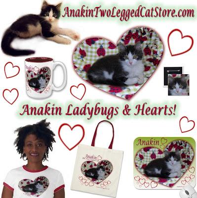 Anakin's Zazzle Store Anakin Ladybugs & Hearts anakintwoleggedcatstore.com