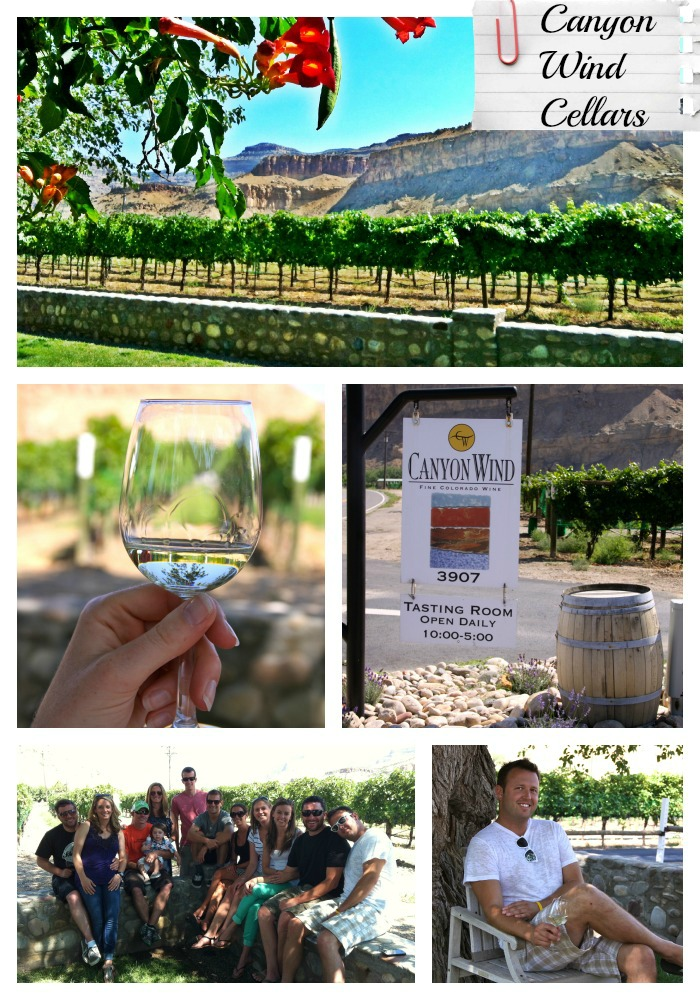How Much Is Palisade Wine Tour