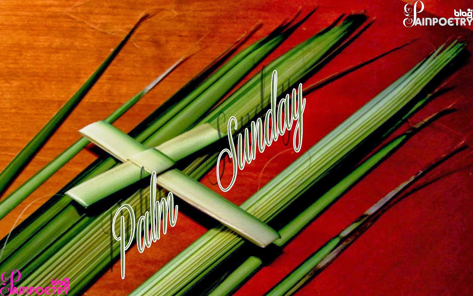 Palm-Sunday-Palm-Image-HD-Wide