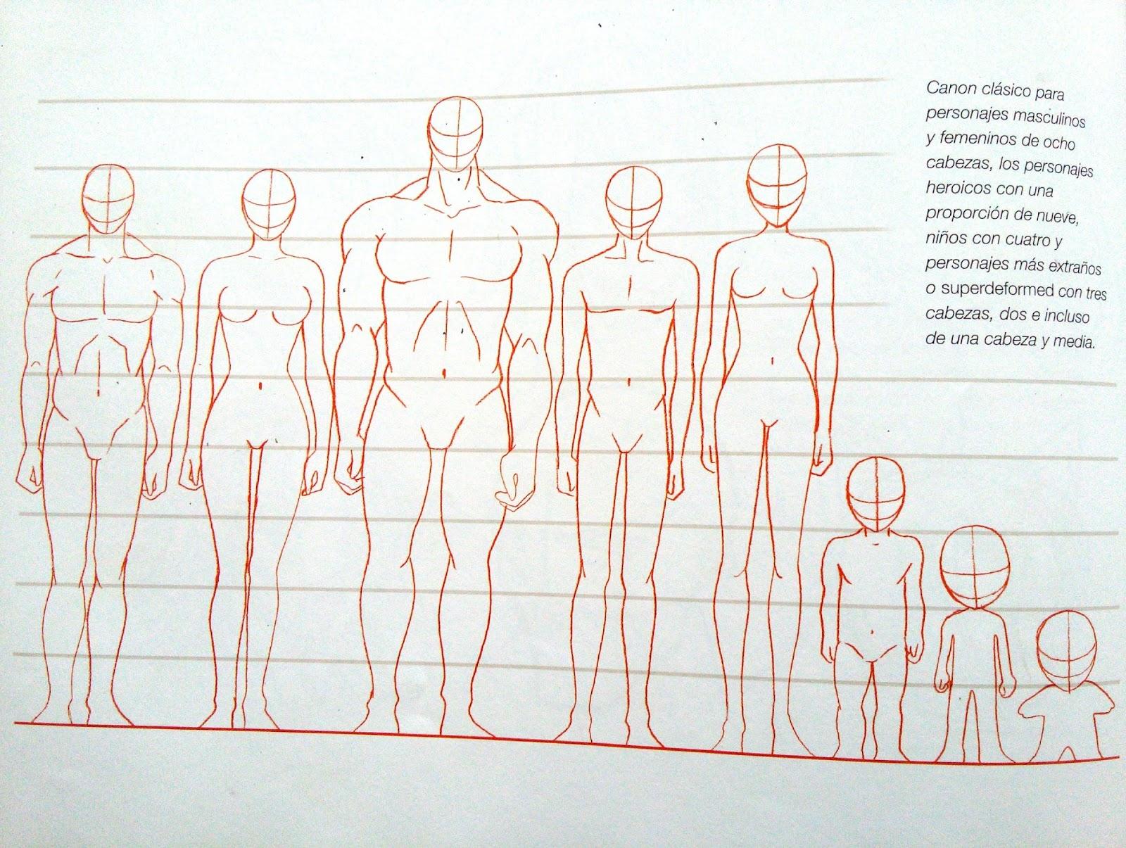Fantástico El Cuerpo Humano Masculino Componente - Imágenes de ...