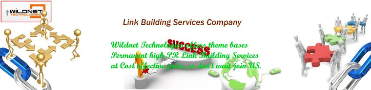 Link Building India