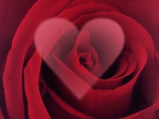 Valentine Day Romantis 2016