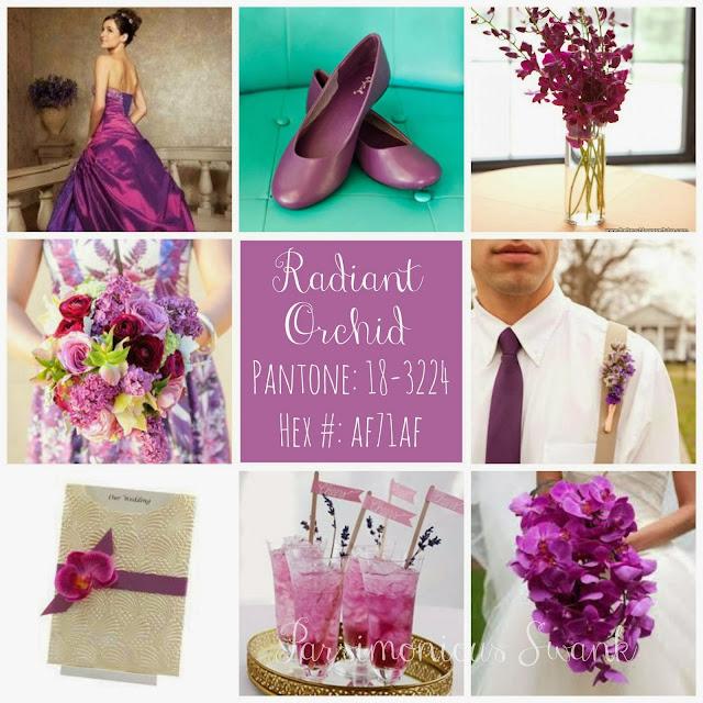 Orquidea Radiante. El Color de Moda en 2014.