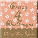 Crazy 4 Challenges Challenge Blog