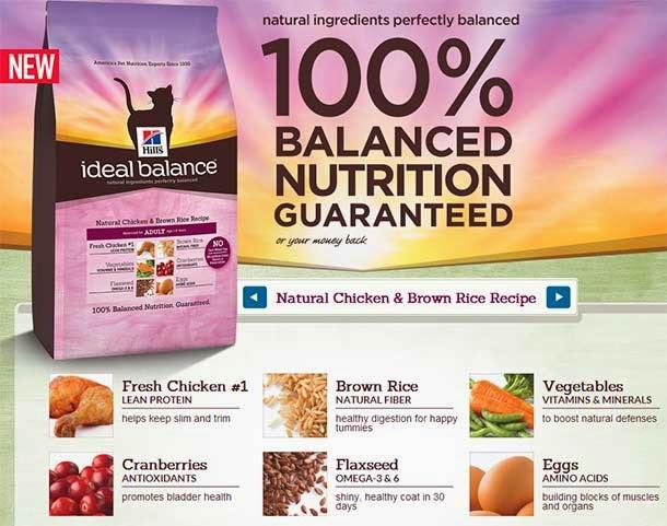 Hills Science Diet Ideal Balance Denise Fessenden
