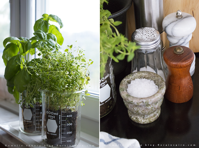 kitchen vignetts, flavouring cooking, interior herbs spices kitchen, mortar, compote, herbs, old lab jars. thyme, basil