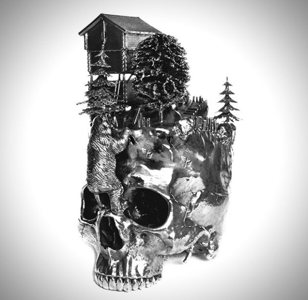Silver Skulls and Landscapes Wallpapers