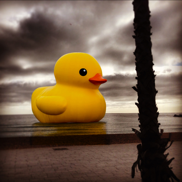 This is just a hallucination... the duck never floated in Barcelona... too bad, actually.