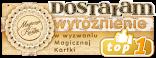 wyróżnienie TOP1 - Magiczna Kartka