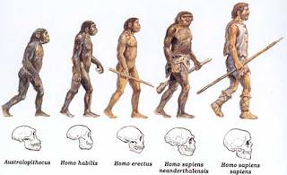 evolução humana instrumentos