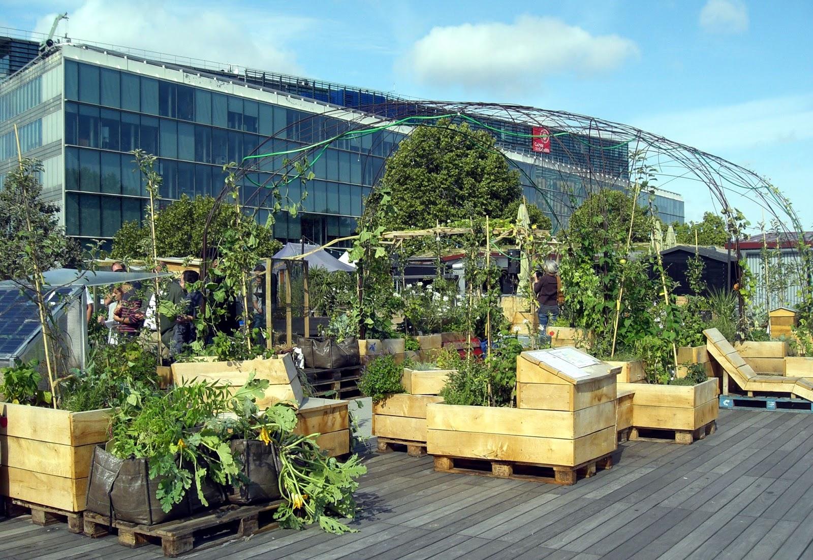 Living roof laboratoire d agriculture urbaine en bord de seine vergers urb - Agriculture urbaine paris ...