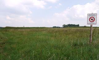 Keltische Viereckschanze Buchendorf
