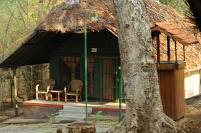 kabini river lodge, jungle lodges and resorts, India camping