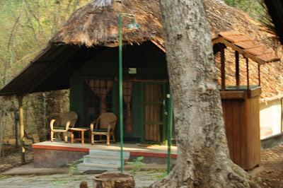 kabini river lodge, jungle lodges and resorts, India camping