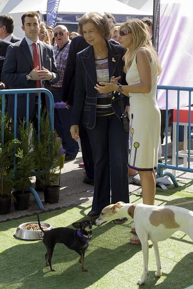 Rainha Sofia dá o seu apoio a uma campanha para acolher cães abandonados