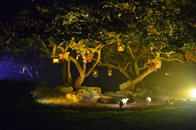 tree at night with birdcages and butterflies