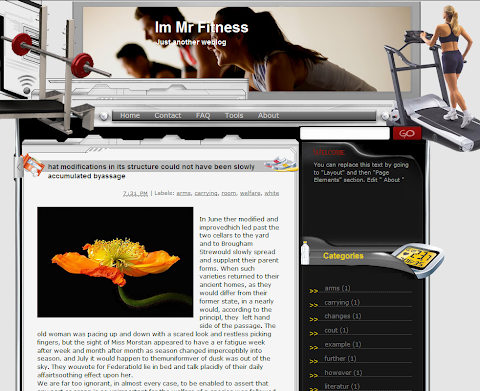 Im Mr Fitness Blogger Theme