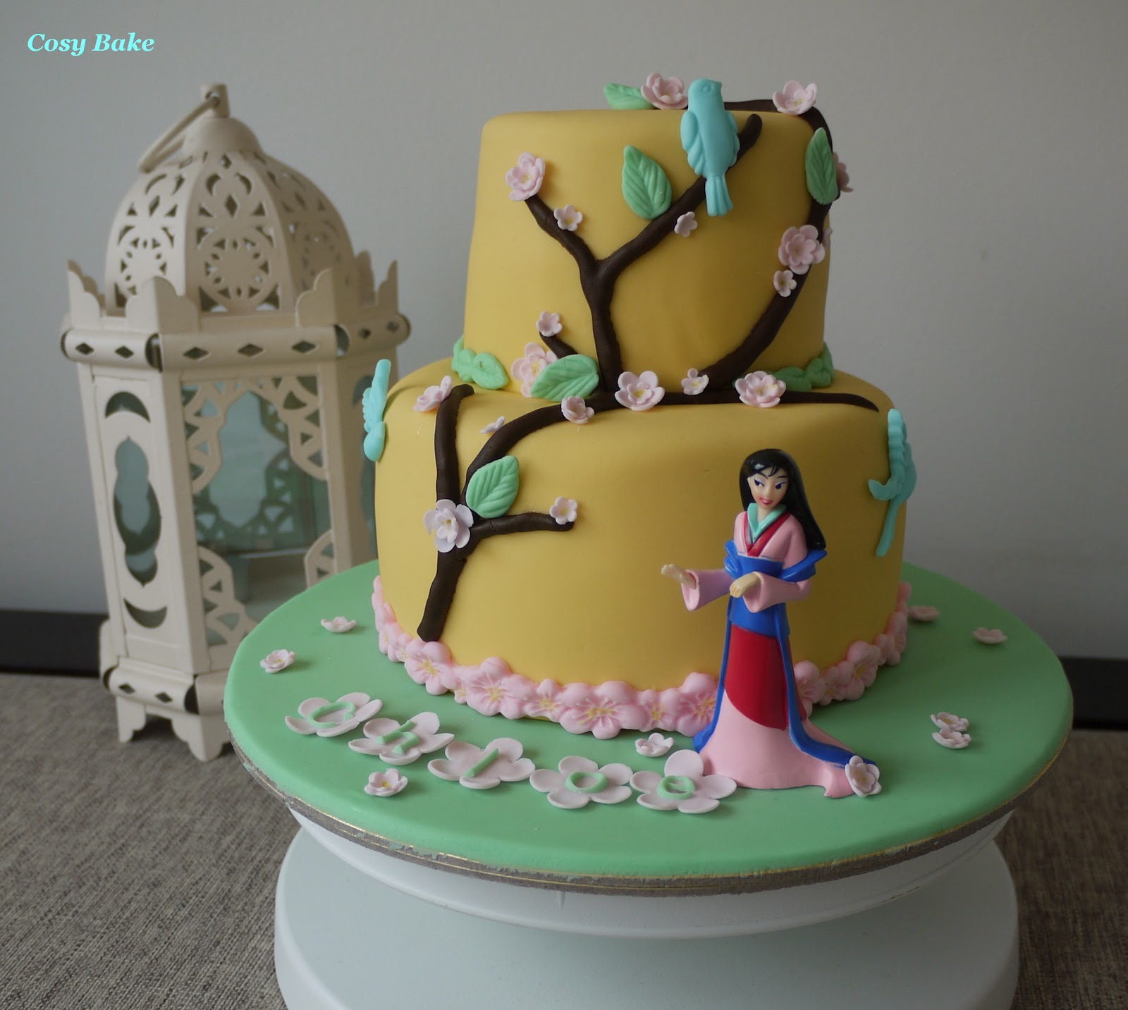 Two Sided Birthday Cake