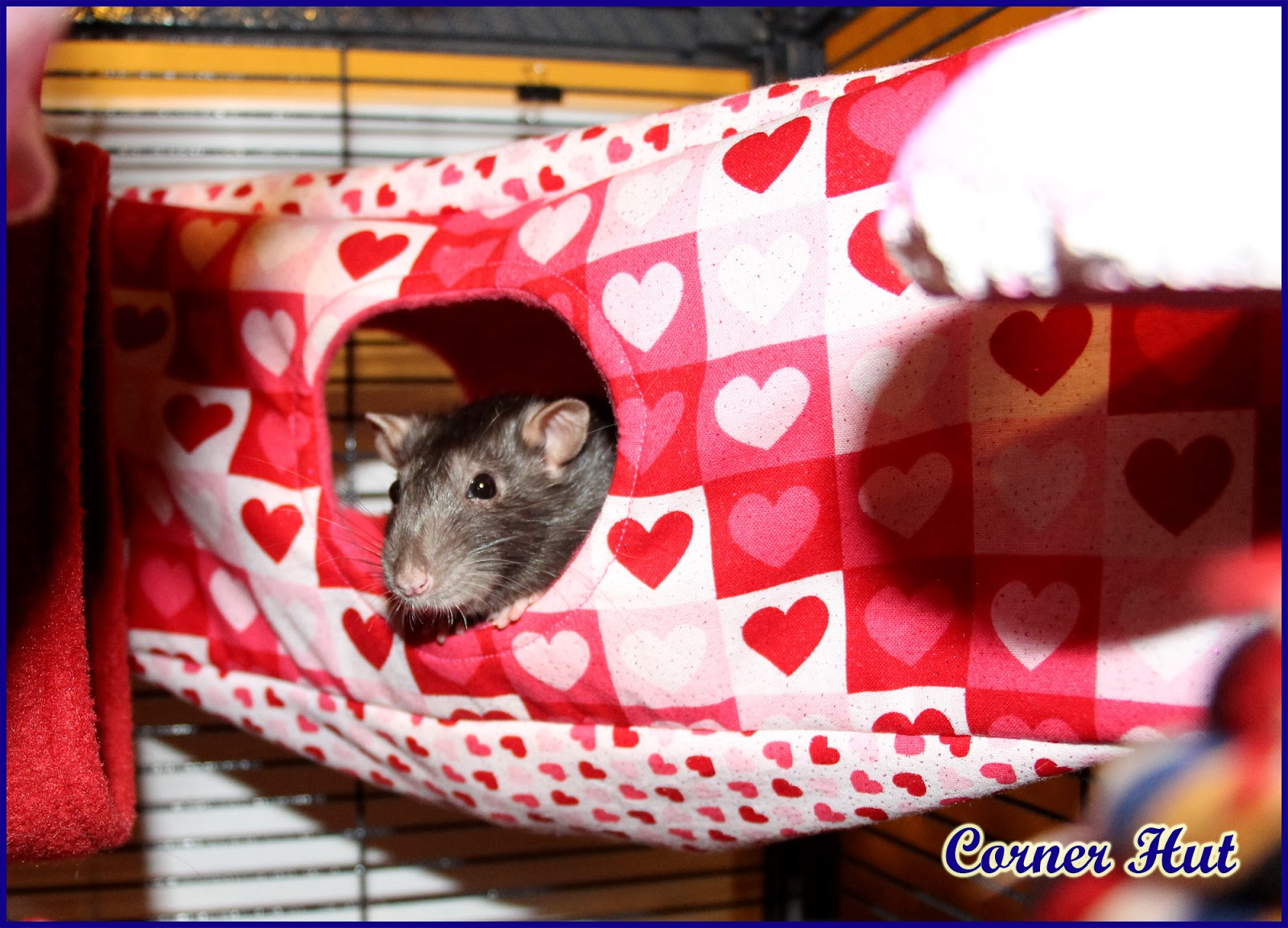 The Tutorials for Common Rat Hammocks and Accessories PDF file has been updated. The file now includes tutorials for the corner hut, which is similar to a ...