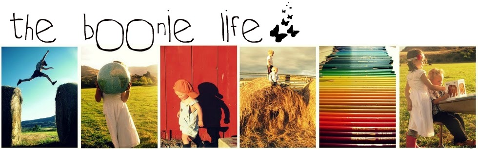 I changed my blog's address to theboonielife.blogspot.com.  Come on over!