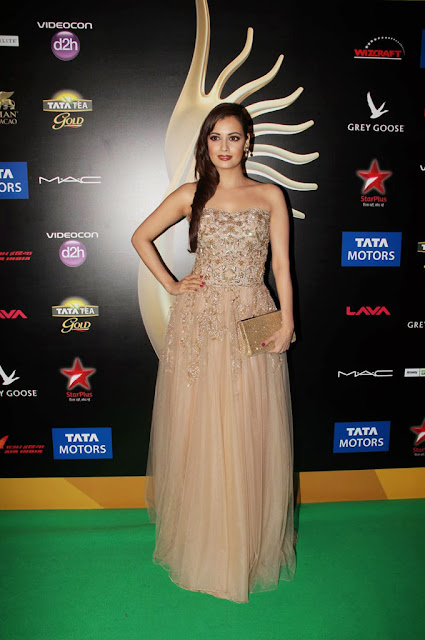 Bollywood Beautiful Actress Dia Mirza at International India Film Acadmy Awards 2013 Macau