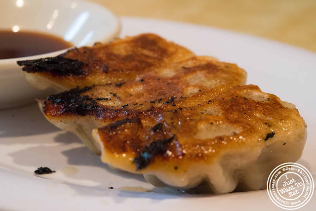 Image of Pork and vegetable veggie gyoza at Sapporo Ramen in NYC, New York