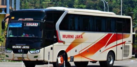 Nomor Telepon Agen Bus Murni Jaya