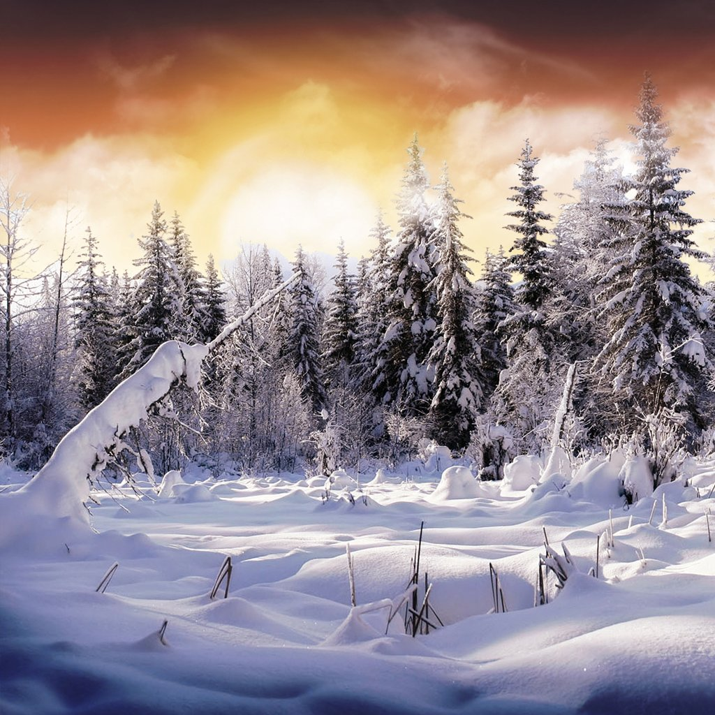 Wallpaper Downloads: Wallpaper: Snow Wallpaper Download