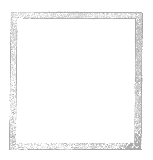 digital gray scale frame image