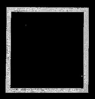 digital gray scale frame image