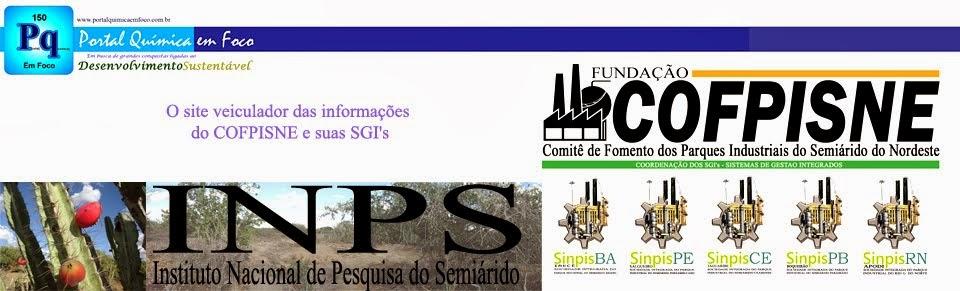 O site veiculador das informações do COFPISNE
