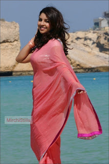 Richa Gangopadhyah in lovely Peach Colored Transparent Saree Beautiful Pics