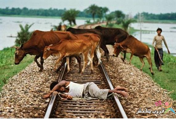 only in India Seen On www.coolpicturegallery.us
