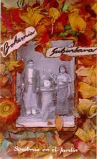 Carátula para cassete de Sombras en el jardín (Bohemia Suburbana 1994)