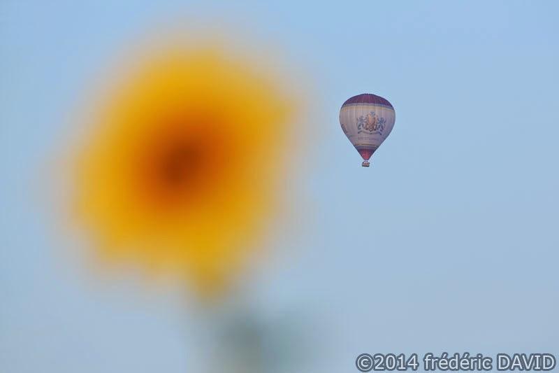 champ tournesol ballon ciel france montgolfiere Seine-et-Marne