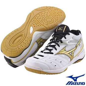 mizuno wave gate SMU shoes