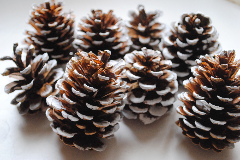 peachy cheek painted pine cones