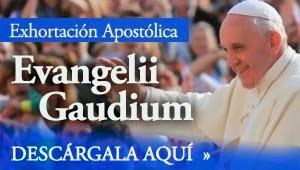 """""""LA ALEGRÍA DEL EVANGELIO"""""""