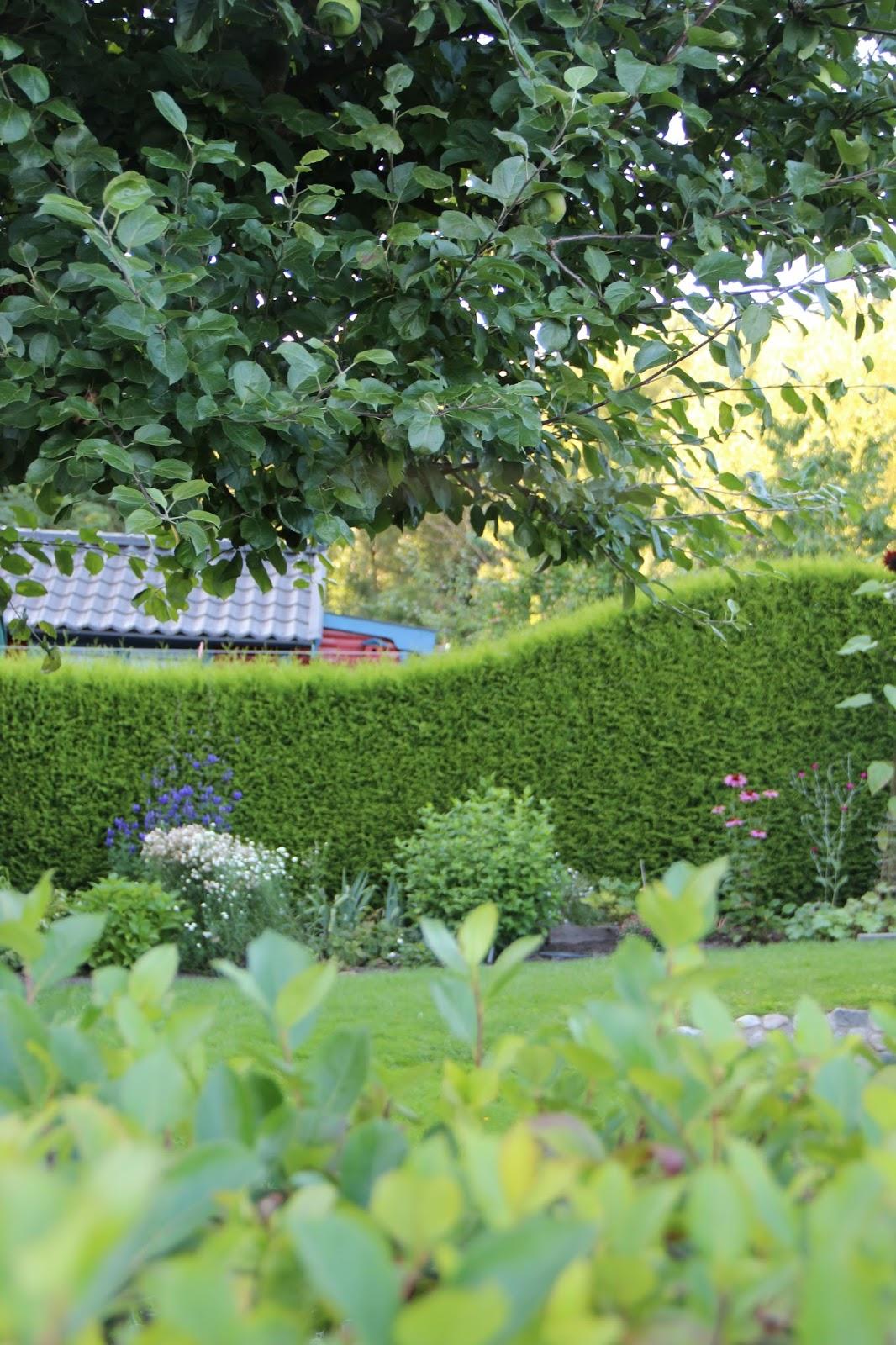 en grön sida: Intryck från igår (och en väv som andas trädgård)