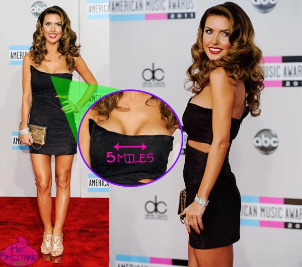 Audrina Patridge Fake Boobs