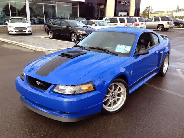 2003 ford mustang mach 1 automatic related infomation. Black Bedroom Furniture Sets. Home Design Ideas