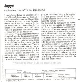 Blog Safari club, características de el Japyx
