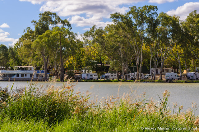 Murray River shore in Mildura
