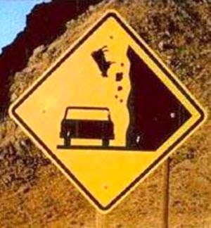 http://www.funnysigns.net/caution-falling-cows/