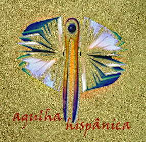 AGULHA HISPÂNICA 2010-2011