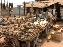 pasar lome voodoo, Togo